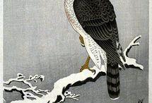 Птицы - Birds