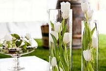 Tulpen schikken