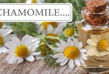 Our Ingredients / Essential oils and other natural ingredientgs