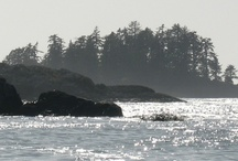 Vancouver Island / A huge island in British Columbia with so much natural beauty . . . / by visual chick