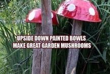 garden mushrooms