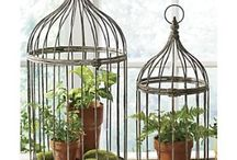 Bird decorative cages