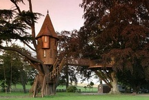 Tree Houses / by Janet Mitschke Young