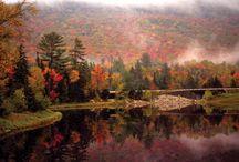 LaCrosse, Wisconsin / The Place I Live / by Debra Feyen