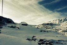 Skiing / Winter Wonderland