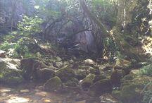 Dupnisa cave