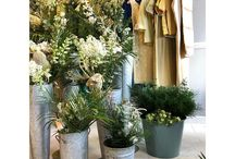 Willow & Hay Floristry
