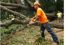 Are You prepared and ready for the next storm clean up?