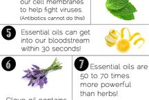 They Say These Are Essential... / Essential Oils. What? / by Meghan Moser