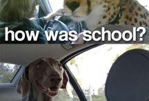 how was school