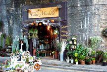 csodálatos virág boltok.