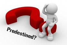 predestined / blog post http://nicolegalpern.co/post/106715409131/predestined