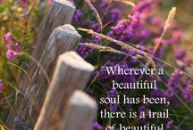 Quotes - Beautiful Soul