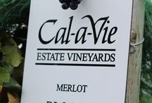 Vineyards | Wine / Vineyards or Merlot & Cabernet Grapes used to make our  ChÂteau Cal-a-Vie wine.