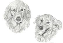 Pet Portraits by CCreech Studio