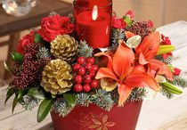 Christmas Gifts / A range of Christmas Gifts from Andersons of Nottingham