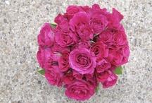 Flower Girls Inc / my business!