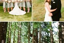 Brianne's Wedding