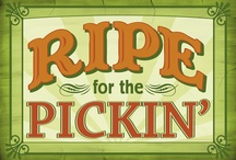 Ripe for the Pickin' / by Christine Stewart
