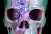 Crafted Skulls