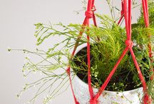 DIY Suspension pour plantes vertes
