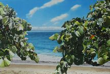 Fine Art Paintings / One-of-a-kind fine art paintings by artists represented at Habatat Galleries FL