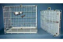Bird Carriers / Whether you are planning on taking your bird on vacation or you live in an area where you need to evacuate in a moments notice, bird carriers are important.  Multipurpose bird carriers can be used as hospital cages and sleep cages, too. / by Diane Burroughs