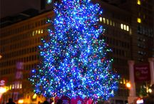 Christmas in Portland / It's always been the most wonderful time of the year. Portland has some amazing traditions to make your holidaze even more magical. / by Tarrah Lenahan