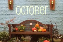 Thanksgiving ideas- Fall decorating / by Jessica Forrey