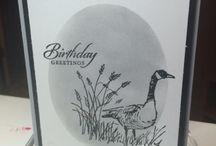 Wetland cards