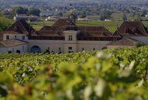 Premier Grand Cru Wines / 0