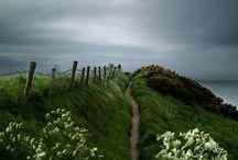 Walk / by Gina Cloud