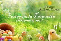 Offerte Tenute Albano / Scopri tutte le nostre offerte dedicate a voi