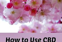 CBD Oil for Anxiety, Insomnia, & Pain / CBD Oil is the latest health trend for natural management of anxiety, insomnia, and pain. Learn about hemp-derived cannibidiol and how CBD oil can help manage different conditions. FAQs, product recommendations, research, and ways to use CBD oil.