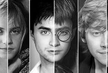 For the Love of Harry Potter