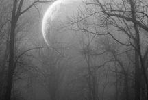 misty moonlight