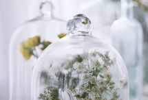 glass jars and cloches / by ruth mead