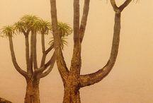 la geografia delle piante