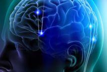 Austin Alzheimer's and Parkinson's Disease