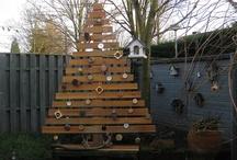 Kerstboom buurt