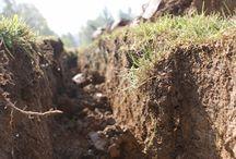 wykaszanie koszenie trawników
