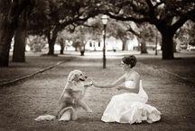 Fotoideen Hochzeit mit Hund