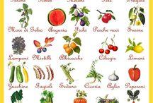 Calendario alimentare