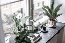 Fönsterbräda