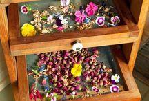 Organic Gardening Drying