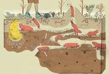 földalatti állatok