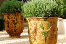Have Some Decorum Provençal Garden Pots / Provence, garden pots, south of France, gardening