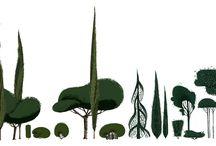 Illustration | Plants
