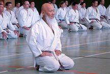 Karate / Japan Karate Association