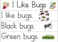 Bugs & Insects Activities | Pre-K Preschool / Bugs and Insect Activities for Pre-K and Preschool Kids. / by Karen Cox @ PreKinders